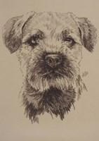 Border Terrier Fine Art Print