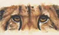 Eye- Catching Cheetah Fine Art Print