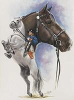 Lippizaner Fine Art Print