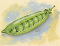 Sugar Snap Peas Fine Art Print