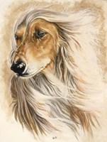 Afgan Hound Fine Art Print