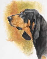 Black and Tan CoonHound Fine Art Print