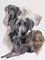 Weimaraner and Ghost Fine Art Print