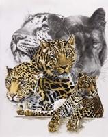 Elusive Fine Art Print