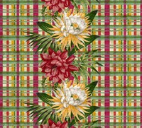 Cereus Plaid Multi Fine Art Print