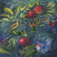 Orchard Life Image Fine Art Print