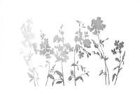 Silver Foil Flower Field Fine Art Print