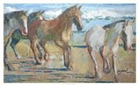Caballos en la Playa Fine Art Print