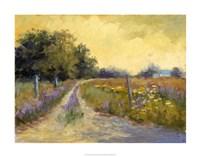 Fall's Golden Fields Fine Art Print