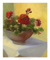 Tuscan Geraniums Fine Art Print