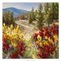 Pine Ridge Fine Art Print