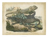 Nature's Gathering VI Fine Art Print