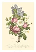 Plentiful Bouquet III Fine Art Print