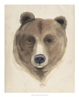 Watercolor Animal Study VI Fine Art Print