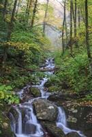 Small Waterfalls 3 Fine Art Print