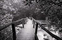 Wooden Bridge In Fog BW Fine Art Print