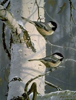 Chickadees At Dawn Fine Art Print