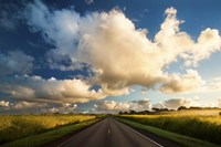 Central Oahu Road Fine Art Print