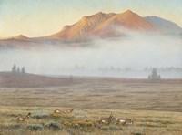 Mackenzie Passage Fine Art Print