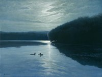Moonlight Loons Fine Art Print