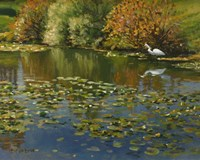Plein Air Egret 1 Fine Art Print