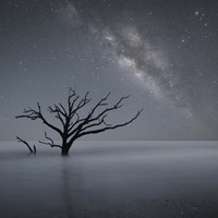 Milky Way In Botany Bay 1 Fine Art Print