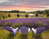 Lavender Chairs, Horton Bay, Michigan '14-color Fine Art Print