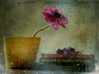 A Day To Stay At Home Fine Art Print