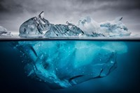 Buoyancy Fine Art Print