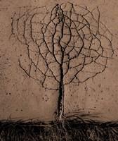 Asphalt Tree Fine Art Print