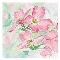 Pink Dogwood I Fine Art Print