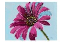 Daisy Crazy Fine Art Print