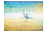Birds On The Beach Fine Art Print