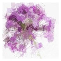 Modern Lilac I Framed Print