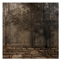 Stone Wall Landscape 2 Framed Print