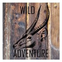 Wild Adventure Fine Art Print