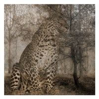 Wild Jungle 1 Fine Art Print