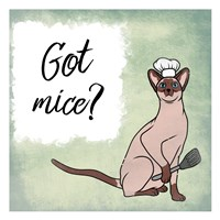 Got Mice Fine Art Print