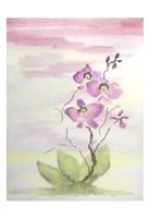 Orchid Trio 3 Fine Art Print