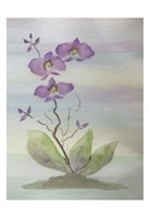 Orchid Duo 1 Fine Art Print