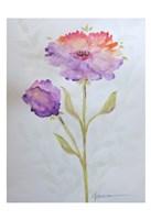 Poppies 1 Fine Art Print