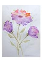 Poppies 2 Fine Art Print