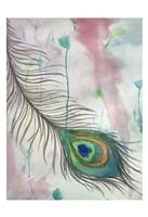 Feather 556 Fine Art Print