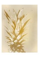 Golden Sweets 1 Framed Print