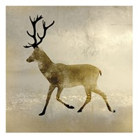 Wildlife Lodge 3 Fine Art Print