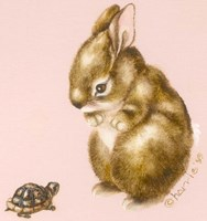 Bunny And Turtle Fine Art Print