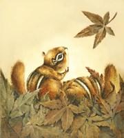 Fall Flurry Fine Art Print