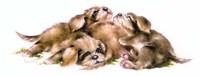 Puppy Pile Fine Art Print