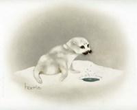 Seal Fine Art Print