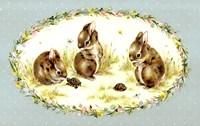 Bunny Tales Fine Art Print